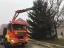 Aufstellen des Weihnachtsbaumes am Dorfplatz 2017